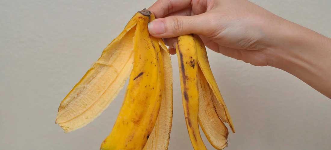 utilidades y usos de las cáscaras de frutas y verduras en la cocina y el hogar