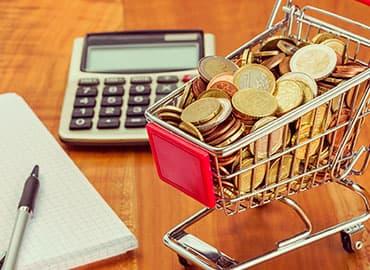 ideas para optimizar el presupuesto familiar y despensa
